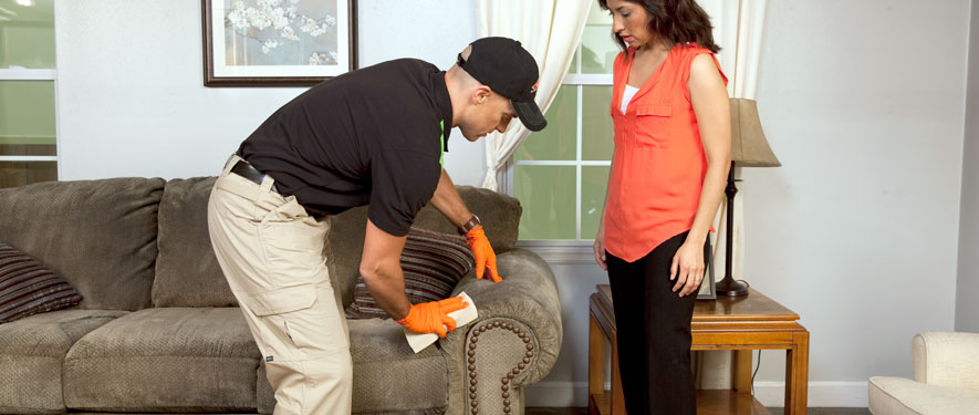 Wilson, NC carpet upholstery cleaning